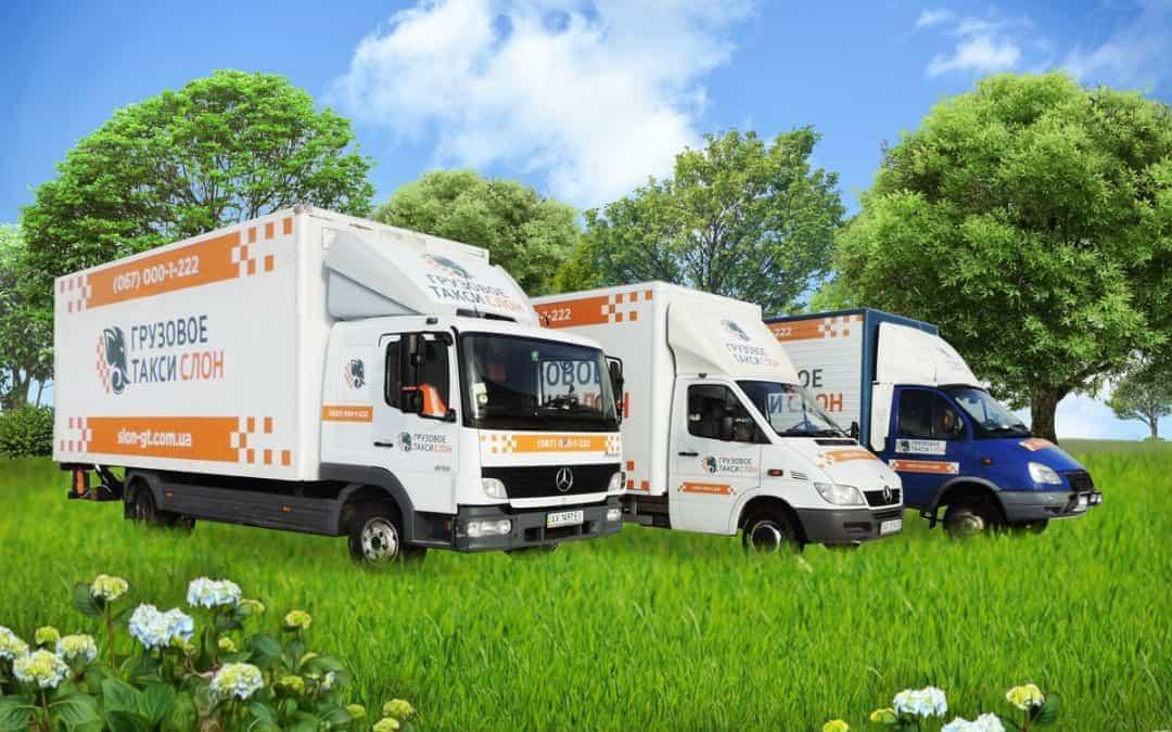Основные критерии выбора службы грузового такси
